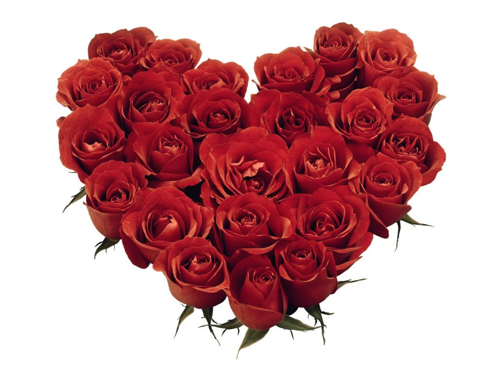 hearts-roses
